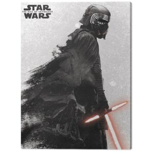 Tablou Canvas Star Wars: The Rise of Skywalker - Kylo Ren And Vader, (60 x 80 cm)