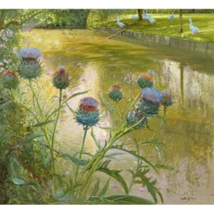 Cardoons Against the Moat Reproducere, Timothy Easton
