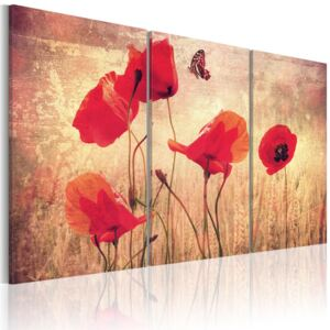 Tablou Bimago - Poppies in vintage style 60x40 cm