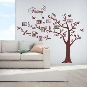 Sticker perete Photo Tree