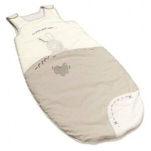 Thermobaby Sac de dormit pt iarna Good night Bunny 6-36 luni
