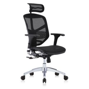 Scaun Ergonomic Enjoy PDH