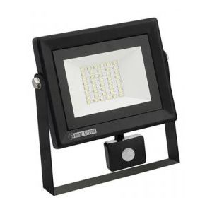Proiector 30W Senzor Led SMD Pars/s-30