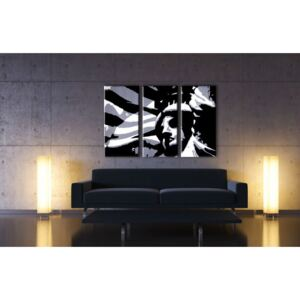 Tablou pictat manual POP Art Kip Slobody 3-piese 120x80cm