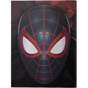 Tablou Canvas Spider-Man Miles Morales - The Mask of a Hero, (30 x 40 cm)