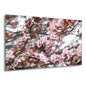 GLIX Tablou pe sticlă - Beautiful Blossoms 4 x 30x80 cm