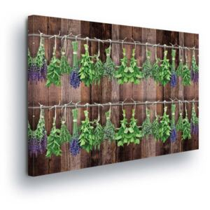 GLIX Tablou - Vintage Theme with Herbs II 45x145 cm
