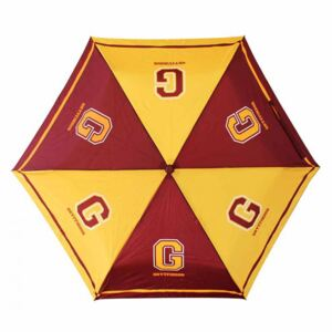 Umbrelă Harry Potter - Gryffindor