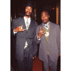 Snoop Dogg Tupac - Suits Poster, (59,4 x 84,1 cm)