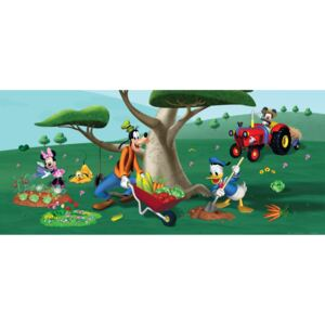 Fototapet Disney - Mickey in gradina