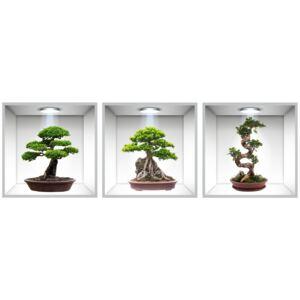 Sticker Bonsai 3D - Nise Perete - 120x40 cm