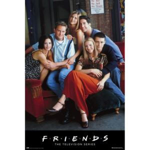 Friends - Characters Poster, (61 x 91,5 cm)