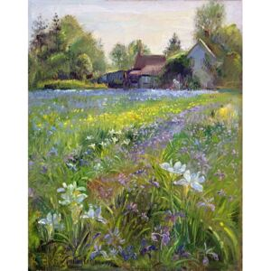 Dwarf Irises and Cottage, 1993 Reproducere, Timothy Easton