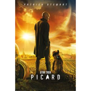 Star Trek: Picard - Picard Number One Poster, (61 x 91,5 cm)