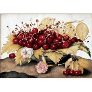 Cherries and Carnations Reproducere, Garzoni, (70 x 50 cm)