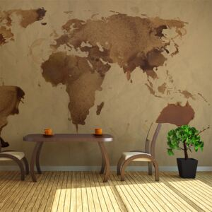 Fototapet XXL Bimago - Tea map of the World + Adeziv gratuit 450x270 cm
