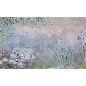 Waterlilies (detail of upper section), c.1910 Reproducere, Monet, Claude