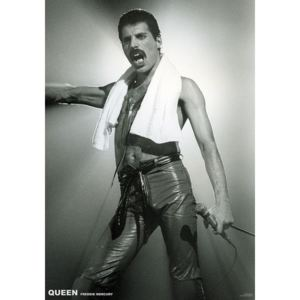 Queen (Freddie Mercury) - Live On Stage Poster, (59,4 x 84 cm)