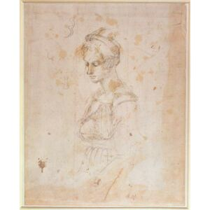 W.41 Sketch of a woman Reproducere, Michelangelo Buonarroti