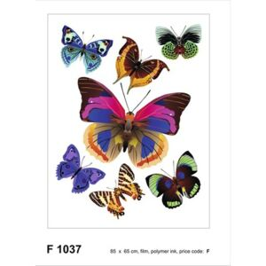 Sticker Butterflies 65x85 cm