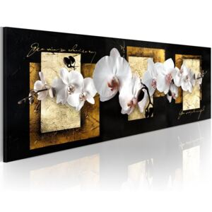 Tablou Bimago - Ingenious Composition With Orchids 120x40 cm