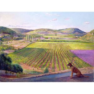 Watching from the Walls, Old Provence, 1993 Reproducere, Timothy Easton