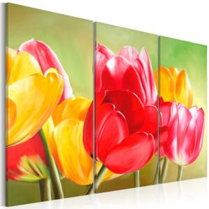Tablou Bimago - Tulips bloom again... 60x40 cm