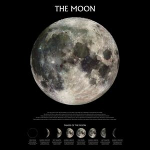 The moon – stage of the moon Poster, (61 x 91,5 cm)