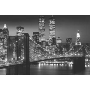 Manhattan - night Poster, (91,5 x 61 cm)