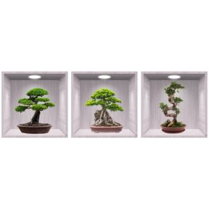 Sticker Bonsai 3D - Nise Lemn- 120x40 cm