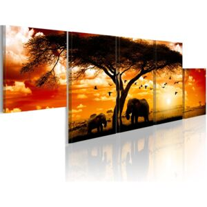 Tablou Bimago - Red sunset - Africa 100x30