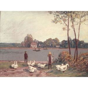 Alfred Sisley - On the Banks of the Loing Reproducere