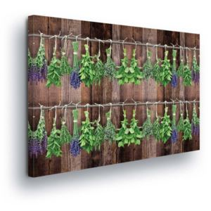 GLIX Tablou - Vintage Theme with Herbs II 100x75 cm