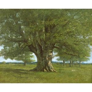 The Flagey Oak Tree, 1864 Reproducere, Gustave Courbet