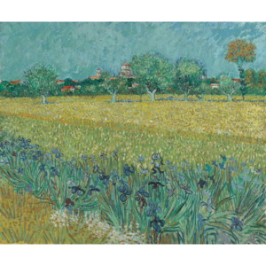 Field with Flowers near Arles, 1888 Reproducere, Vincent van Gogh