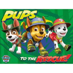 Paw Patrol - Pups To The Rescue Tablou Canvas, (80 x 60 cm)