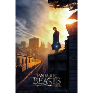Fantastic Beasts And Where To Find Them - One Sheet 2 Poster, (61 x 91,5 cm)